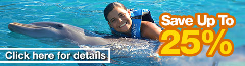 Dolphin Swims Discounts