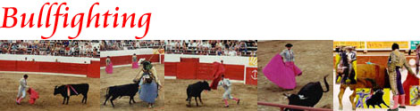 Cancun Bullfighting Discounts