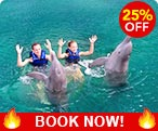 Dolphin Swims Cancun Discount