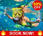 Three-Reef Snorkeling