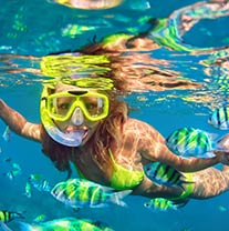Unlimited Snorkeling