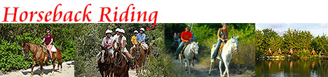 Cancun Horseback Riding Tours