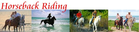 Horseback Riding Tours Playa del Carmen