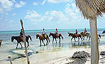 Majahual Horseback Riding