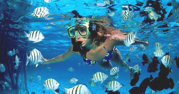 Cozumel Glass Bottom Tour