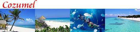 Cozumel Tours from Riviera Maya