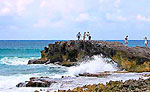 Cozumel Sightseeing Excursion