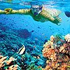 Private Snorkeling Tour in Cozumel