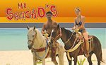 Mr Sancho´s All Inclusive Horseback Ride