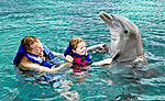 Aquarium Cancun Dolphin Program for Couples