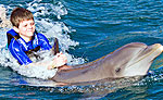 Playa del Carmen Dolphin Swim & Ride