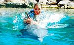 Dolphin Swimming at Aquarium Cancun