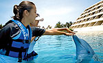 Trainer for a Day Cancun Dolphins