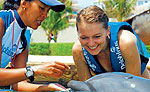 Dolphin Trainer Activity, Mayan Riviera