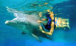 Swim With Dolphins at Xcaret
