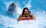 Dolphins Extreme Tour Cancun