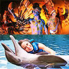 Dolphins & Xcaret at Night