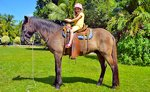Horseback Riding Excursion Cozumel