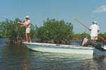 Costa Maya Fly Fishing