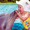 Dolphin Encounter Riviera Maya