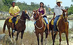 Horseback Riding Cancun