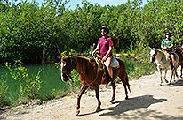 Cancun Horseback Riding