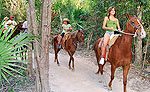Horseback Riding Mayan Jungle