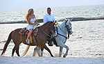 Horseback Riding Tour Playa del Carmen