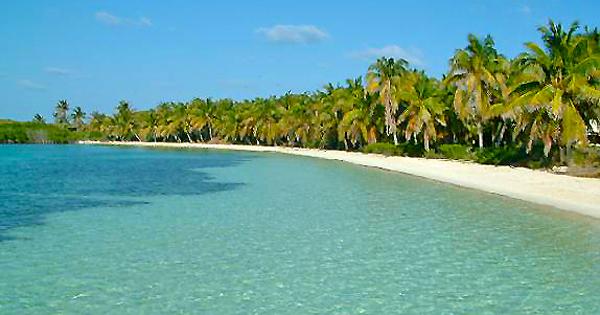Free Tour In Cancun
