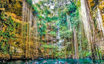 Mayan Cenotes Photo Tour