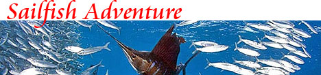 Sailfish Adventure Playa del Carmen