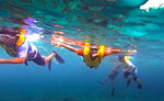 Night Snorkeling Guided Tour Cancun