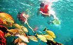 Cancun Snorkeling Tour