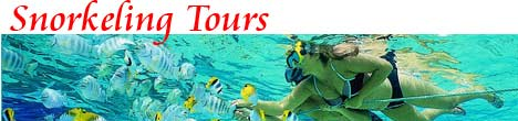 Cancun Snorkel Tour
