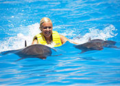 Dolphin Swim Cancun