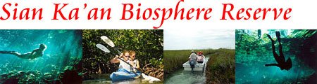 Sian Kaan Biosphere Tour from Cancun Discounts